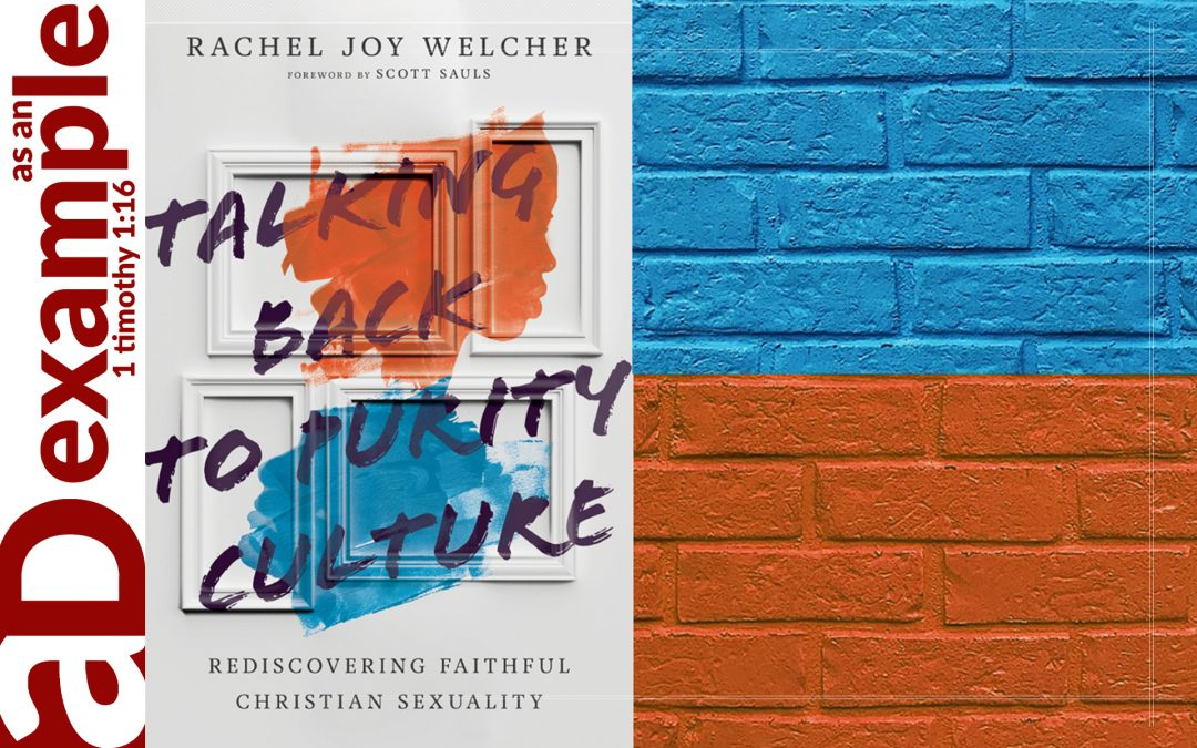 Review: Talking Back to Purity Culture