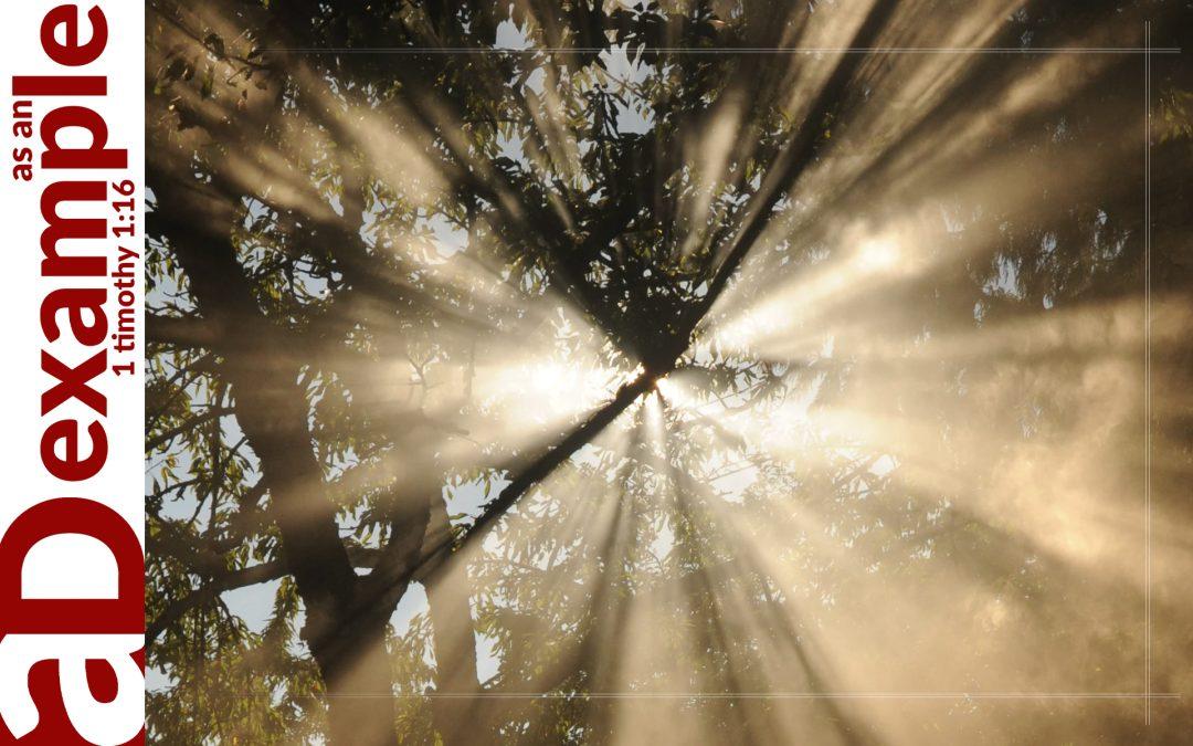 Finding Light (Psalm 36)
